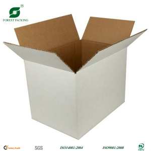White Corrugated Box