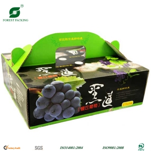 Fruit corrugated carrier box