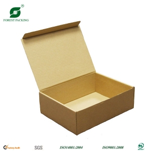 Custom Carton Shipping Box